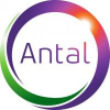 Antal International Executive Recruitment.